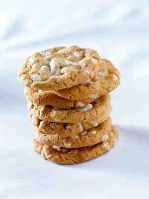 Cookies copyright Lauri Patterson iStock_000008692571