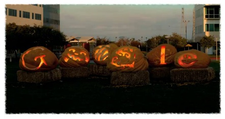 Google giant pumpkins 10 31 2011