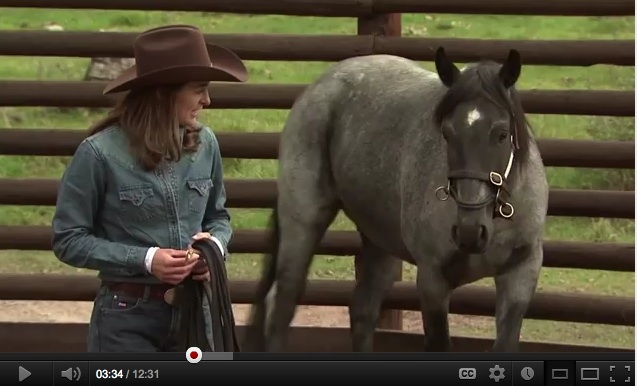 Koelle Simpson TED talk on YouTube (screenshot of Koelle and horse)